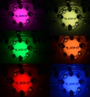 WP1210-4_ ylight_WP1210_High_brightness_LED_PAR_Fixtures